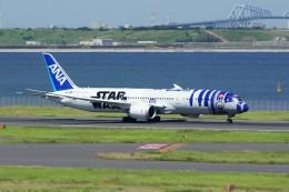 しんさんが、羽田空港で撮影した全日空 787-9の航空フォト(写真)