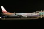 北の熊さんが、新千歳空港で撮影したチャイナエアライン 737-8ALの航空フォト(飛行機 写真・画像)