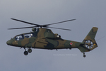Scotchさんが、岐阜基地で撮影した陸上自衛隊 OH-1の航空フォト(写真)