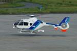 新潟空港 - Niigata Airport [KIJ/RJSN]で撮影されたオールニッポンヘリコプター - All Nippon Helicopterの航空機写真