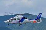 パンダさんが、花巻空港で撮影したオールニッポンヘリコプター AS365N3 Dauphin 2の航空フォト(写真)