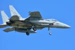 パンダさんが、三沢飛行場で撮影した航空自衛隊 F-15J Eagleの航空フォト(写真)