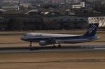 fukucyanさんが、名古屋飛行場で撮影した全日空 A320-211の航空フォト(写真)