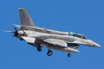 Ryan-airさんが、ネリス空軍基地で撮影したアラブ首長国連邦空軍 F-16F Fighting Falconの航空フォト(写真)