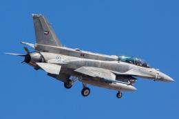 Ryan-airさんが、ネリス空軍基地で撮影したアラブ首長国連邦空軍 F-16F Fighting Falconの航空フォト(飛行機 写真・画像)