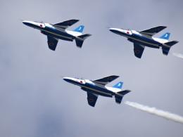 たくらんけさんが、三沢飛行場で撮影した航空自衛隊 T-4の航空フォト(飛行機 写真・画像)