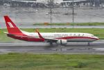 tsubasa0624さんが、羽田空港で撮影した上海航空 737-8SHの航空フォト(飛行機 写真・画像)