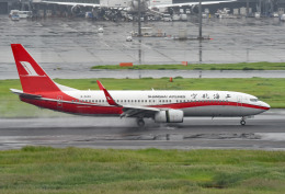 tsubasa0624さんが、羽田空港で撮影した上海航空 737-8SHの航空フォト(写真)