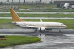 tsubasa0624さんが、羽田空港で撮影した南山公務 737-7ZH BBJの航空フォト(写真)