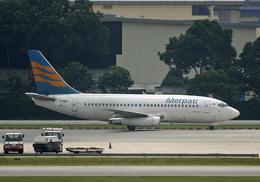 Bokuranさんが、シンガポール・チャンギ国際空港で撮影したメルパチ・ヌサンタラ航空 737-217/Advの航空フォト(飛行機 写真・画像)