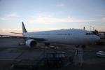 ミシュラン787さんが、コペンハーゲン国際空港で撮影したスカンジナビア航空の航空フォト(写真)