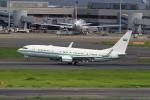 たまさんが、羽田空港で撮影したサウジアラビア王室空軍 737-8DP BBJ2の航空フォト(飛行機 写真・画像)