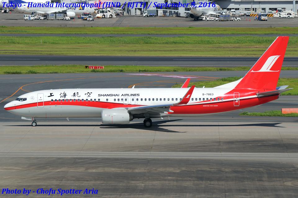 Chofu Spotter Ariaさんの上海航空 Boeing 737-800 (B-7863) 航空フォト