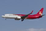 Scotchさんが、成田国際空港で撮影した深圳航空 737-87Lの航空フォト(飛行機 写真・画像)