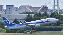 Take51さんが、伊丹空港で撮影した全日空 737-881の航空フォト(飛行機 写真・画像)