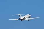 Dojalanaさんが、函館空港で撮影した国土交通省 航空局 525C Citation CJ4の航空フォト(飛行機 写真・画像)