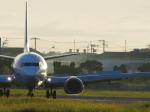 サボリーマンさんが、松山空港で撮影したANAウイングス 737-54Kの航空フォト(飛行機 写真・画像)