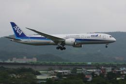 HLeeさんが、台北松山空港で撮影した全日空 787-9の航空フォト(飛行機 写真・画像)