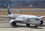 しゅあさんが、伊丹空港で撮影した全日空 787-8 Dreamlinerの航空フォト(写真)