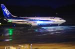 サボリーマンさんが、広島空港で撮影した全日空 737-881の航空フォト(写真)
