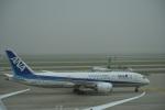 xinerさんが、上海浦東国際空港で撮影した全日空 787-8 Dreamlinerの航空フォト(写真)