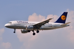 航空フォト:D-AILI ルフトハンザドイツ航空 A319