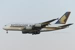 Scotchさんが、成田国際空港で撮影したシンガポール航空 A380-841の航空フォト(写真)