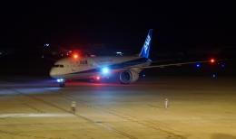 ふるぴーさんが、松山空港で撮影した全日空 787-9の航空フォト(飛行機 写真・画像)