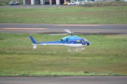 kumagorouさんが、仙台空港で撮影した日本法人所有 AS355N Ecureuil 2の航空フォト(飛行機 写真・画像)