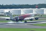 パンダさんが、成田国際空港で撮影したエティハド航空 A340-642Xの航空フォト(飛行機 写真・画像)