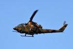 T.Sazenさんが、伊丹空港で撮影した陸上自衛隊 AH-1Sの航空フォト(飛行機 写真・画像)