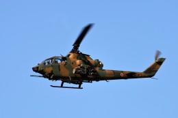 T.Sazenさんが、伊丹空港で撮影した陸上自衛隊 AH-1Sの航空フォト(写真)