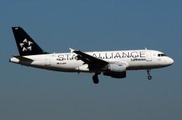 航空フォト:D-AILF ルフトハンザドイツ航空 A319