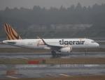 セブンさんが、成田国際空港で撮影したタイガーエア台湾 A320-232の航空フォト(飛行機 写真・画像)