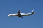 Numaさんが、オヘア国際空港で撮影した全日空 777-381/ERの航空フォト(飛行機 写真・画像)