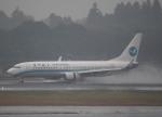 セブンさんが、成田国際空港で撮影した厦門航空 737-86Nの航空フォト(飛行機 写真・画像)