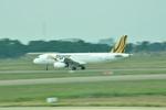 snow_shinさんが、タンソンニャット国際空港で撮影したタイガー・エアウェイズ A320-232の航空フォト(写真)