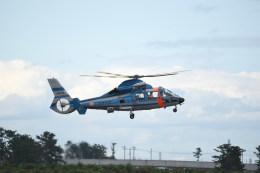 kumagorouさんが、仙台空港で撮影した福岡県警察 AS365N2 Dauphin 2の航空フォト(写真)