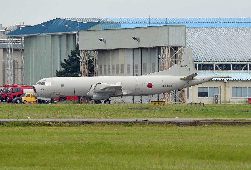 tsubasa0624さんの海上自衛隊 Kawasaki P-3C Orion (5037) 航空フォト