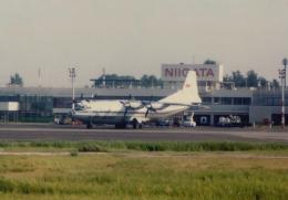 kumagorouさんが、新潟空港で撮影したアエロフロート・ソビエト航空 An-12の航空フォト(写真)