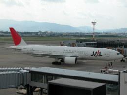 しゃこ隊さんが、伊丹空港で撮影した日本航空 777-246の航空フォト(飛行機 写真・画像)
