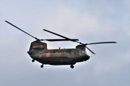 T.Sazenさんが、伊丹空港で撮影した陸上自衛隊 CH-47JAの航空フォト(飛行機 写真・画像)