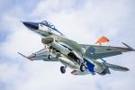 ヶローさんが、岐阜基地で撮影した航空自衛隊 F-2Aの航空フォト(写真)