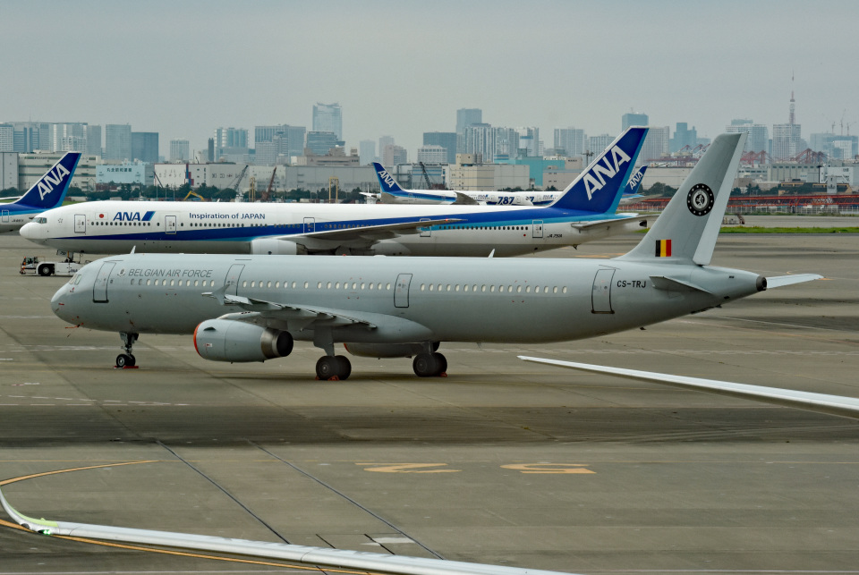 tsubasa0624さんのベルギー空軍 Airbus A321 (CS-TRJ) 航空フォト