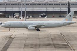 つみネコ♯2さんが、関西国際空港で撮影したベルギー空軍 A321-231の航空フォト(飛行機 写真・画像)