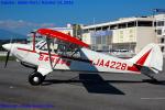 Chofu Spotter Ariaさんが、双葉滑空場で撮影した日本航空学園 A-1 Huskyの航空フォト(飛行機 写真・画像)