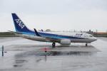 安芸あすかさんが、石垣空港で撮影した全日空 737-781の航空フォト(写真)