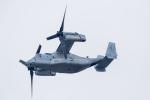 Piggy7119さんが、朝霞駐屯地で撮影したアメリカ海兵隊 MV-22Bの航空フォト(写真)