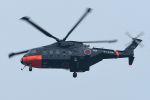 うめやしきさんが、厚木飛行場で撮影した海上自衛隊 CH-101の航空フォト(写真)