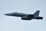 うめやしきさんが、厚木飛行場で撮影したアメリカ海兵隊 F/A-18A Hornetの航空フォト(飛行機 写真・画像)